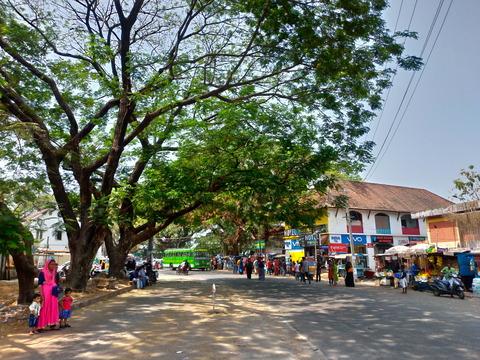【南インド】コロニアル建築を探しにフォートコーチン市内観光①