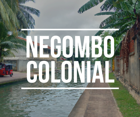 【スリランカ】26_ヨーロピアンな街並のニゴンボをコロニアル観光