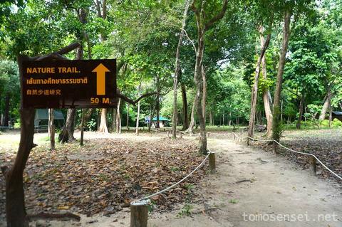 【ランタ島】11_タイの国立公園ロック島に泊まるよ!展望台散策と島のご飯事情について
