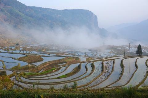 <中国・雲南省旅行その14>世界遺産「紅河哈尼棚田群の文化的景観」の風景②