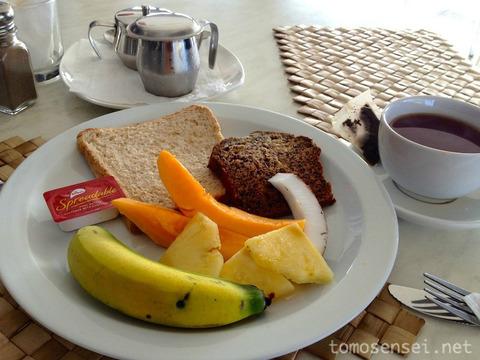 【サモア独立国】国民の80%が肥満というボリューミーな国の首都アピア市内を観光してみる