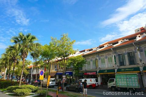 【シンガポール旅行】ジョー・チャット通りをお散歩しながらプラナカン文化を感じたい!